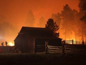 Consejos de seguridad contra incendios si vives en el monte