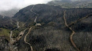 Espectaculares imágenes de Incendios forestales