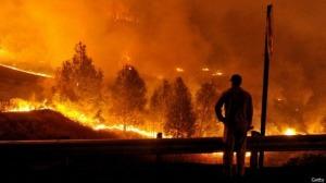 Datos después de los incendios en California