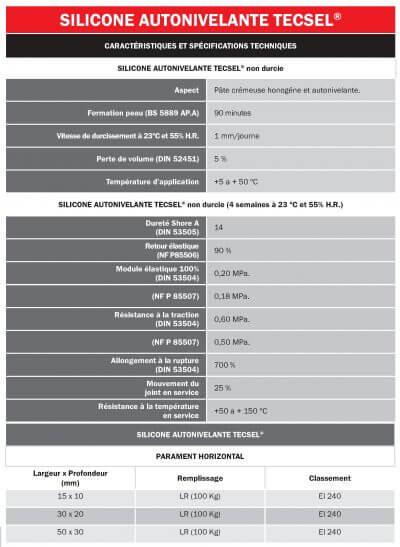 6-3 Silicone Autonivelante Tecsel Caracteristiques